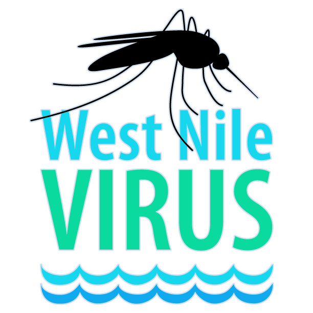 Mosquito sample tests positive for West Nile Virus